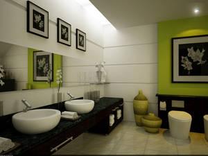 Master's Private Bathroom 01