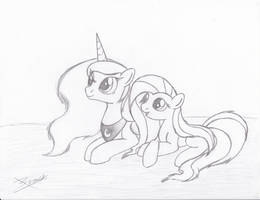 Princess Luna and Fluttershy by Xeirla
