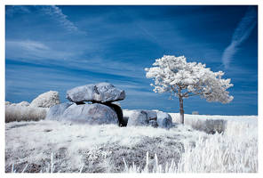 the stone II by creativegrafix