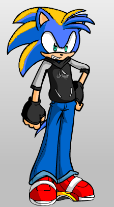 Garret The Hedgehog version 2 by Garretzilla
