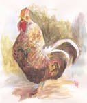 Mr. Chicken by FernandaNia