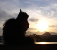Dreamy Cat by FernandaNia