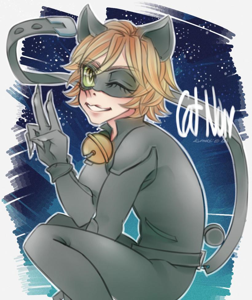 Miraculous LadyBug: Cat Noir by kumadi