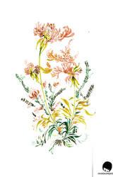 oriental floweryness by photoshop-addict28