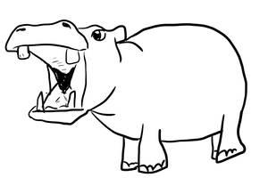 A little Hippo