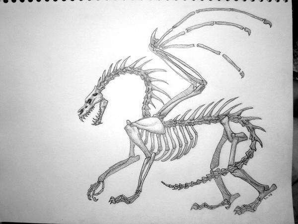 Line Art Dragon : Skeleton dragon by theoddgod on deviantart