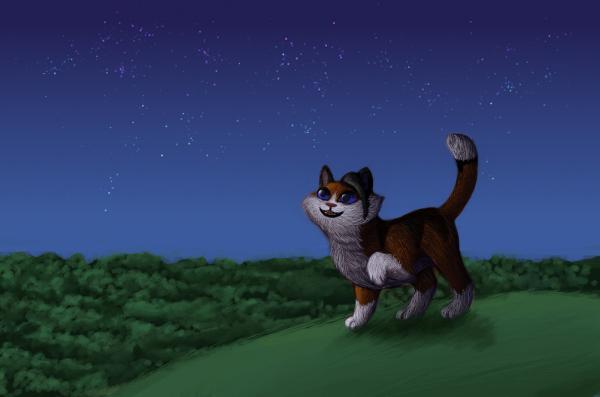 starlight_by_dancing_kitten-d7iuwbm.png