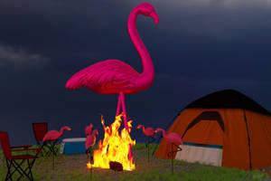 Flamingos Camping