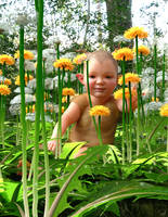 Little one and Dandelions