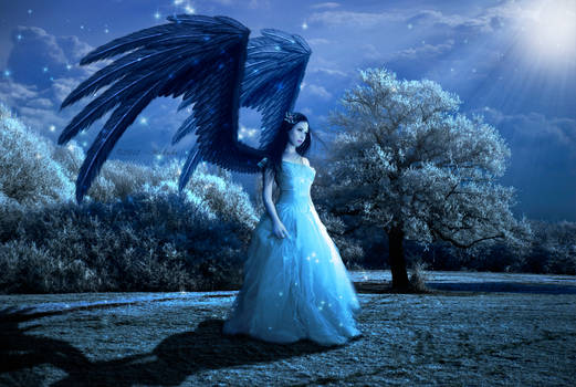 The Magic of an Angel