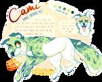commission: cami