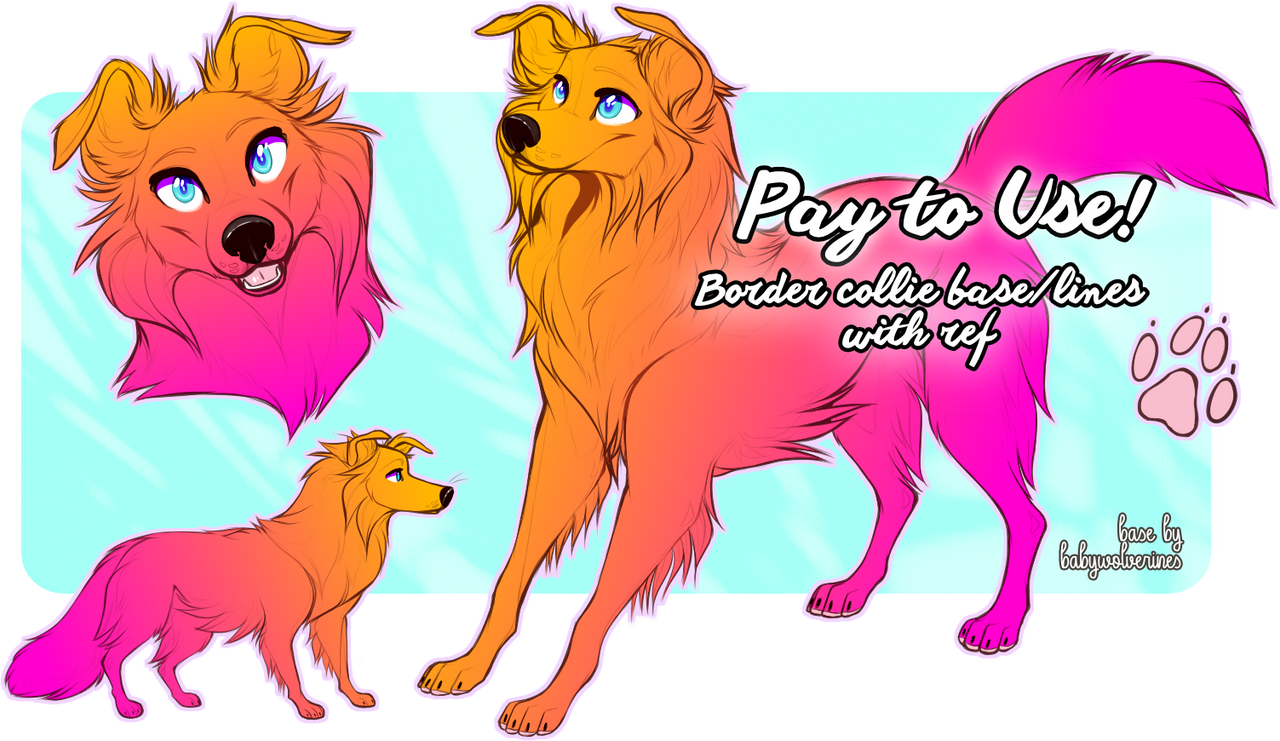 P2U: Border Collie Base With Full Ref