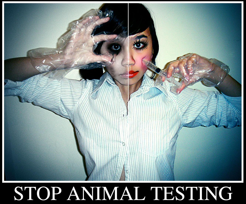 Persuasive Essay On Animal Testing