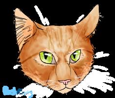 Casper, my dad's cat by Finchwing