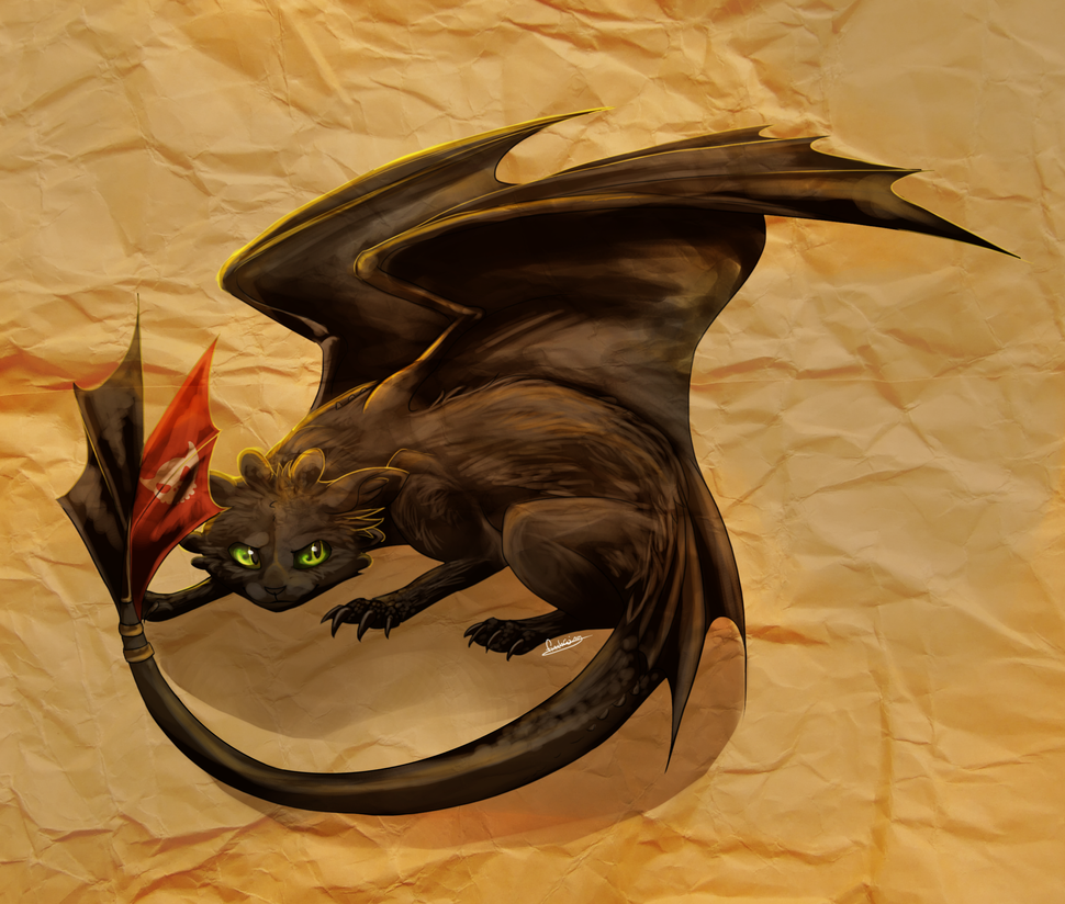 Cat That Looks Like Toothless