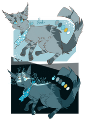 Finch Reference - July 2015 by Finchwing