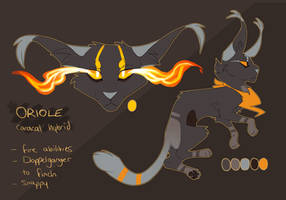 Oriole Reference - August 2016 by Finchwing