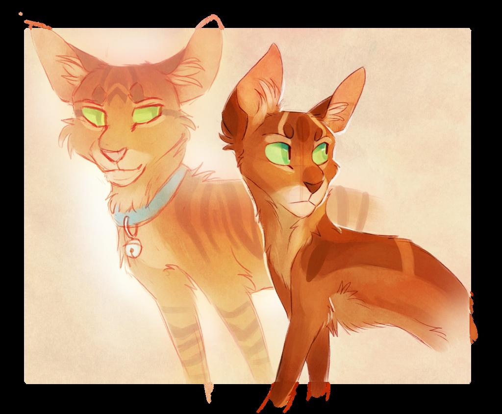 Firestar and Jake by Finchwing on DeviantArt Warrior Cat Drawings Firestar
