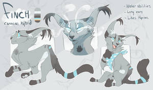 Finch Reference - Jan 2017 by Finchwing
