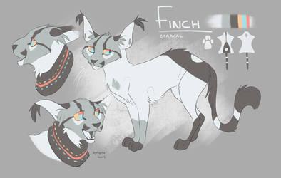 Finch - Jan 2019 ref by Finchwing