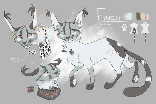 Finch Reference - July 2019