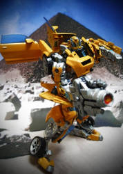 bumblebee on pose by masdabboy