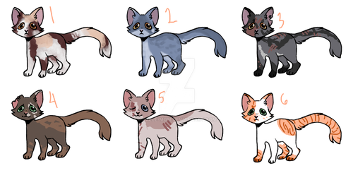kibby adopts!! 5/6 OPEN