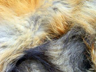 Furs by velikse