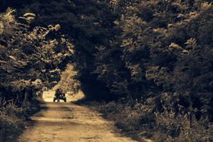 Coming home by DianaCretu