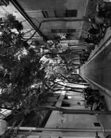 Back street by DianaCretu