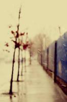 Uncertain days by DianaCretu