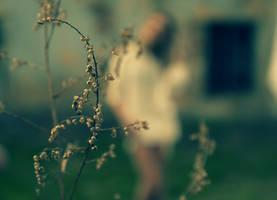 Faint memories by DianaCretu