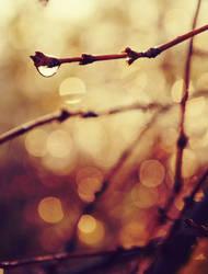Breathe by DianaCretu