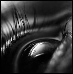 Clarity by DianaCretu