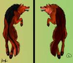 Due facce di una medaglia by KoomaWolf