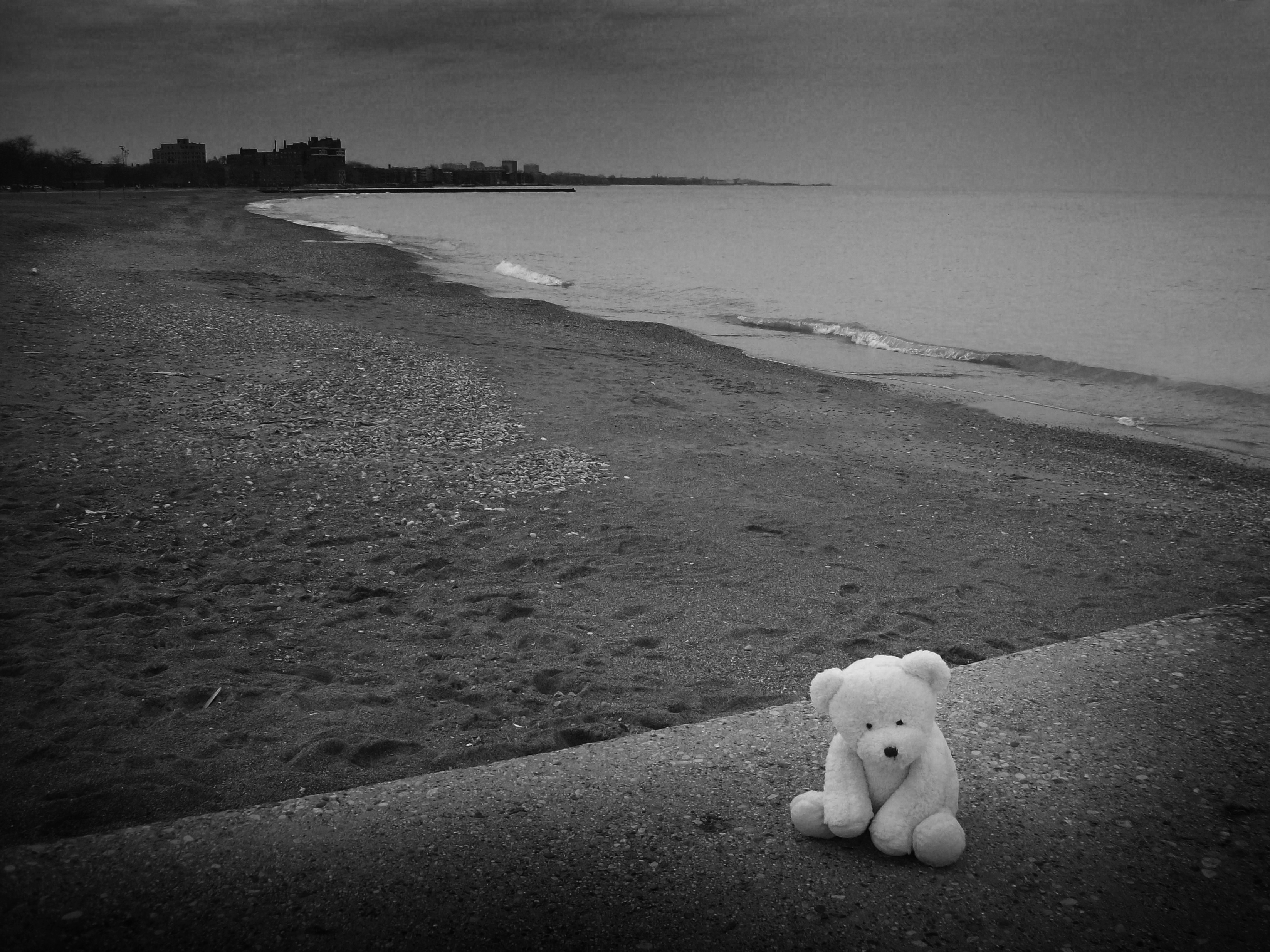 Lonely Bear 5 by kilroyart