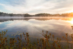 Peaceful morning by Antz0