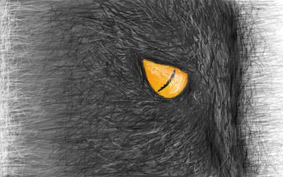 Binky by tinmoonlittle