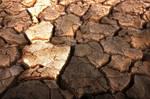 Thirsty soil