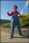 Super Mario Tsubasacon 2011