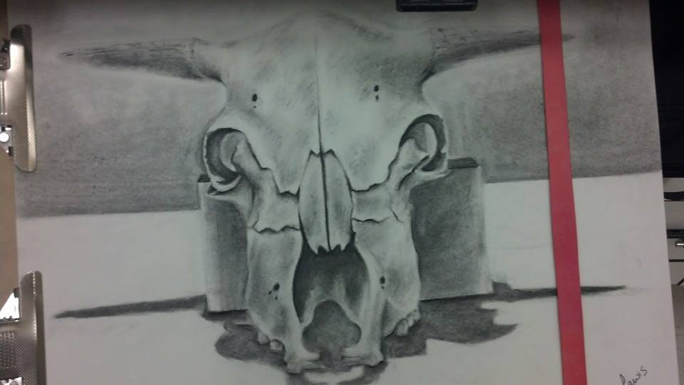 Charcoal Cow Skull by fruitloopsindrea