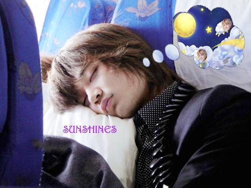 Sleeping Minho and Taemin Sheep by AmySunShinesLane