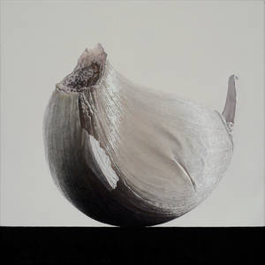 clove of garlic 3, 2016, 40 x 40 cm, oil on canvas