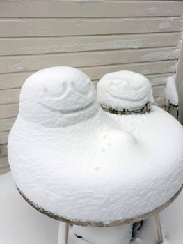 Snowmun x2
