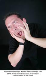 Scream 1 by wakenthedeadstock