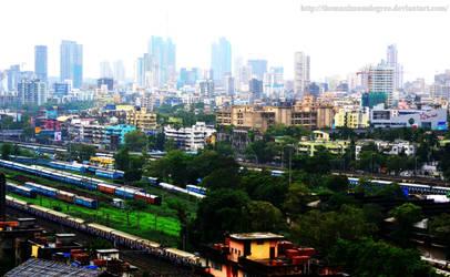 The City Life