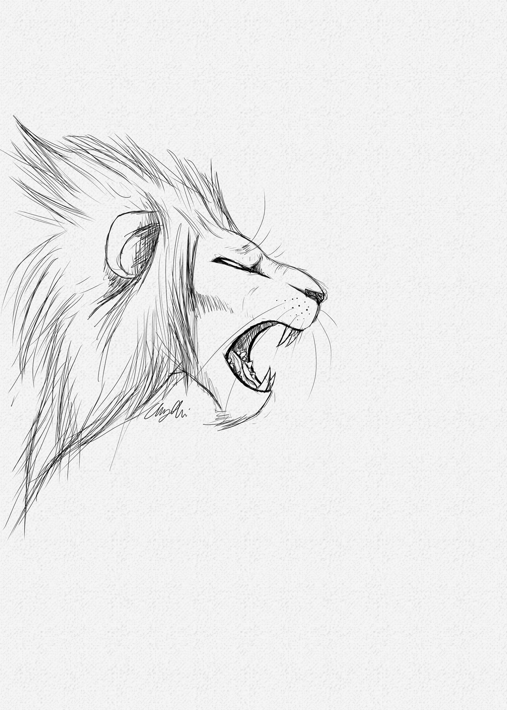 Lion Roar Sketch by OneXWarrior on DeviantArt - photo#14