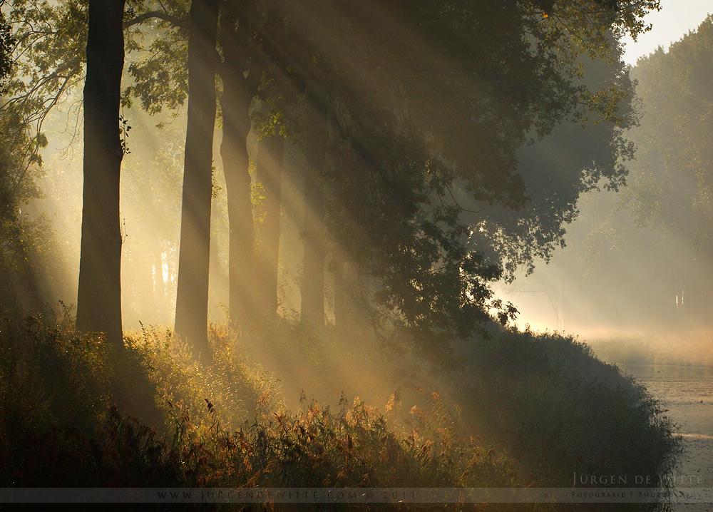 Mystical Morning by JurgendeWitte