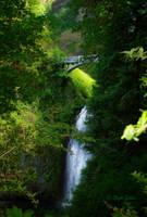 Multnomah Falls by StephGabler