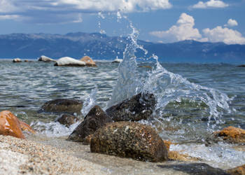 Summer Splash by StephGabler